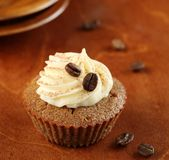 Tiramisu Cupcake Stock Photography