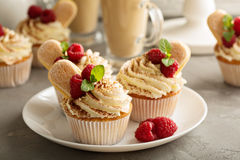 Tiramisu cupcakes with mascarpone cream Royalty Free Stock Photography