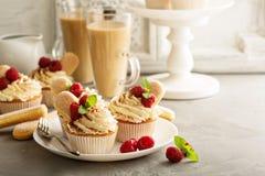 Tiramisu cupcakes with mascarpone cream Stock Photos