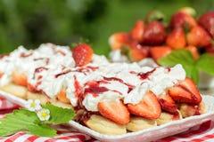 Tiramisu de fraise nouvellement fabriqué image libre de droits