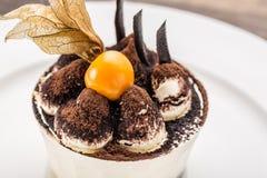 Tiramisu deseru tort z zmielonym czereśniowym zbliżeniem na bielu talerzu Zdjęcie Stock