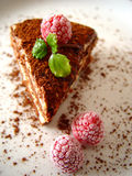 Tiramisu dessert. Served on plate with raspberries Stock Photos