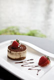 Tiramisu dessert royalty free stock photos