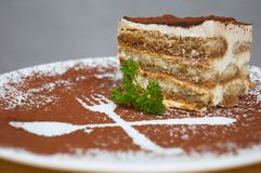 Tiramisu dessert. Served on plate with cpecial decoration. shallow dof Stock Photos