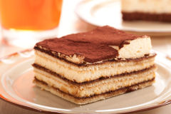 Tiramisu dessert royalty free stock images