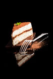 Tiramisu dessert. Stock Image
