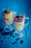 Tiramisu, dessert italien traditionnel photographie stock