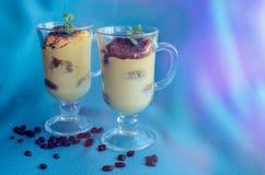 Tiramisu, dessert italien traditionnel images stock