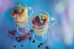 Tiramisu, dessert italien traditionnel image libre de droits