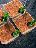 Tiramisu Dessert Stock Images