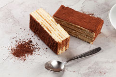 Tiramisu dessert Stock Photography