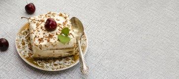 Tiramisu, een traditioneel Italiaans dessert op een lichte achtergrond Close-up stock foto