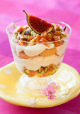 Tiramisu with fig. Served in a glass Royalty Free Stock Image