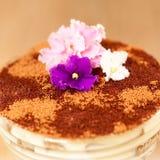 Tiramisu with flower stock photos