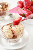 Tiramisu ice cream Royalty Free Stock Photos