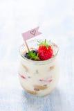 Tiramisu italien fait maison de dessert avec les fraises, la menthe et le cacao dans des pots en verre Photographie stock