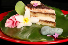 Tiramisu on Lilly Pad Royalty Free Stock Images