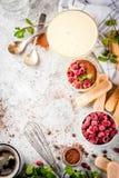 Tiramisu with mint and raspberries Royalty Free Stock Photos