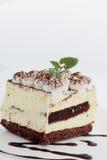 Tiramisu with mint Royalty Free Stock Photo