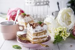 Tiramisu, traditional Italian dessert Royalty Free Stock Photo