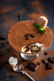 Tiramisu. Traditional italian dessert. Stock Photos