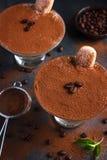Tiramisu. Traditional italian dessert. Selective focus Stock Images