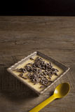 Tiramisu - typische Italiaanse cake Stock Afbeelding