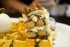 Tiramisu waffle dessert Royalty Free Stock Image