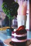 Tiramisucake met verse aardbeien en heemst Royalty-vrije Stock Fotografie