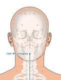 Tirando com esqueleto, ponto CV24 Chengjiang da acupuntura, mal 3D Fotografia de Stock Royalty Free