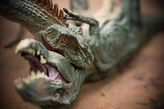 Tirannosauro mordace di allosauro Fotografia Stock Libera da Diritti