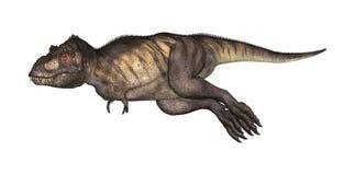 tiranosaurio del ejemplo 3D en blanco Imagen de archivo