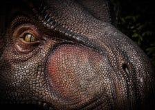Tiranosaurio Rex Fotos de archivo