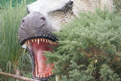 Tiranosaurio Rex - T Rex Imágenes de archivo libres de regalías
