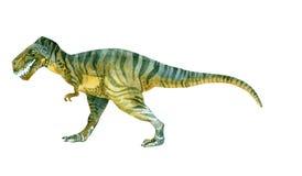 Tiranosaurio Rex y x28; Dinosaur& x29; Foto de archivo