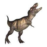 tiranossauro da ilustração 3D no branco Fotos de Stock Royalty Free