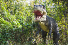 Tiranossauro Rex Foto de Stock Royalty Free
