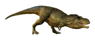 tiranossauro Rex da rendição 3D no branco ilustração do vetor