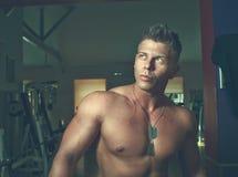 Tirante bello Bodybuilder Immagini Stock