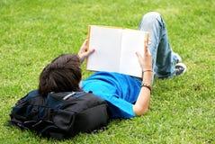 Tirante che pone sull'erba e che legge un libro Fotografia Stock