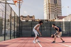 Tiranti che giocano pallacanestro fotografia stock