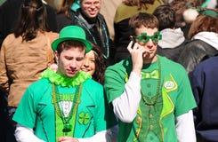 Tiranti irlandesi selvaggi fotografia stock libera da diritti