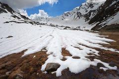 Tiras da neve Fotografia de Stock