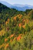 Tiravento Mount, Premilcuore,  Forli, Romagna - Riding mountain Royalty Free Stock Photos