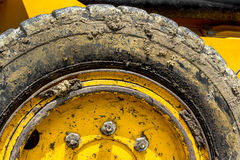 Tire bulldozer Royalty Free Stock Image