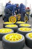 Tire choice Royalty Free Stock Photo