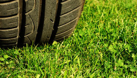 Tire and grass. Tire on a green grass Royalty Free Stock Photo