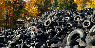 Tire Graveyard Royalty Free Stock Photo
