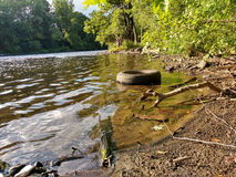 Tire Illegally Dumped and Polluting a Beautiful Riverbank. Mother Earth has once again been disrespected. An old tire has been illegally dumped and now floats Stock Photo