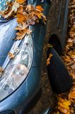 Tire in leaves Stock Images